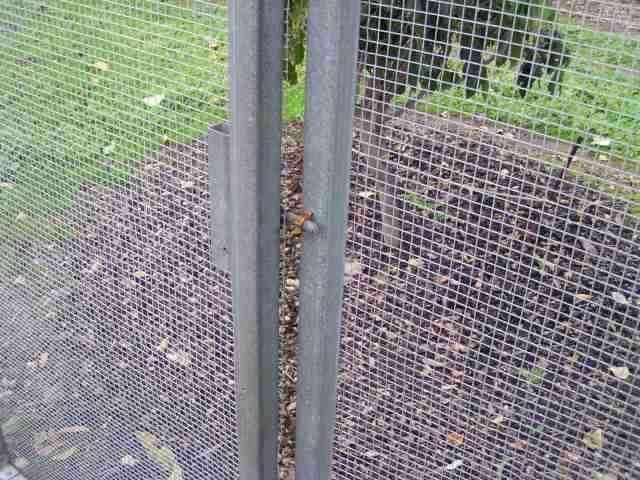 Deatai of door retainer clip to prevent birds following us inside